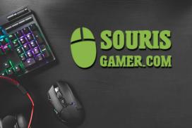 Souris-gamer.com